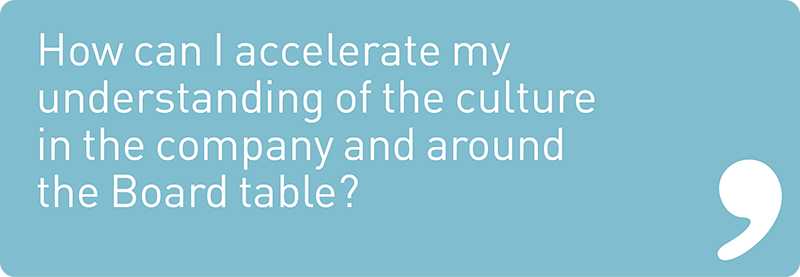 How can I accelerate my understanding of the culture in the company and around the Board table?